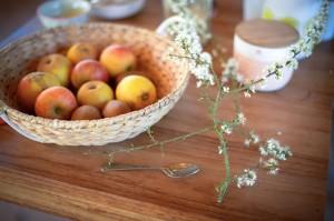 La cuisine des plantes sauvages