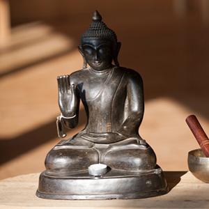 Charte écologique – l'arbre aux étoiles – Bouddha