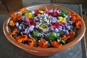 salade des fleurs du jardin