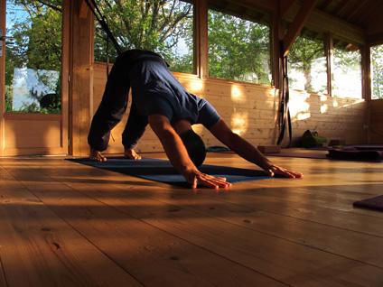 Yoga Vinyasa en automne avec Benoit le Gourrierec - 23 au 25 octobre 2015 - L'arbre aux étoiles