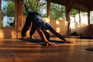 Yoga Vinyasa au printemps avec Benoit le Gourrierec - 22 au 24 avril 2016 - L'arbre aux étoiles