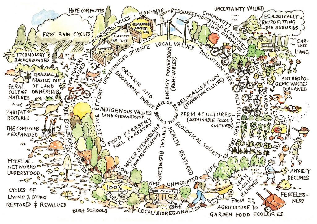 Stage d'initiation à la permaculture - jan 2021