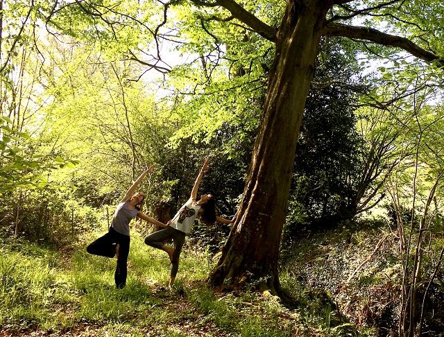 Arbre intérieur: Yoga, Nature et Créativité